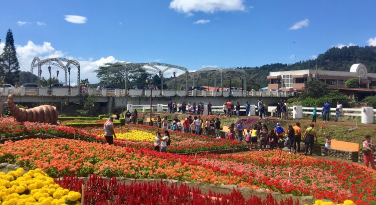 Picture of Boquete Flower Festival