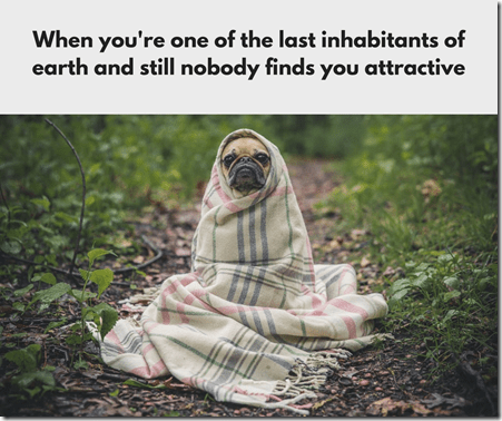 The Initiation meme 10, memes, pug
