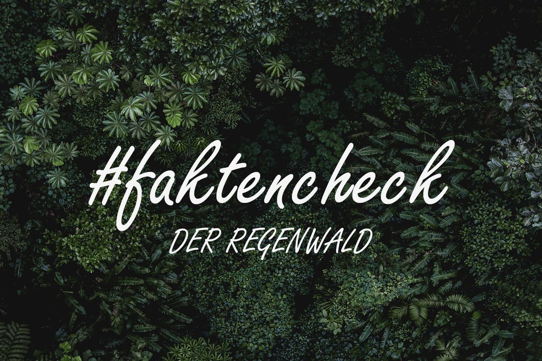 #faktencheck - Der Regenwald
