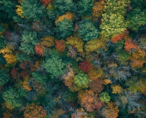 Vermont im Herbst