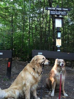 Bolton Pond Trail entrance