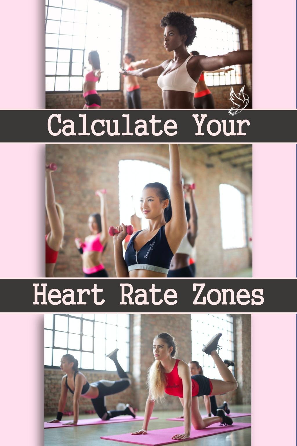 Calculating heart rate zones for fitness