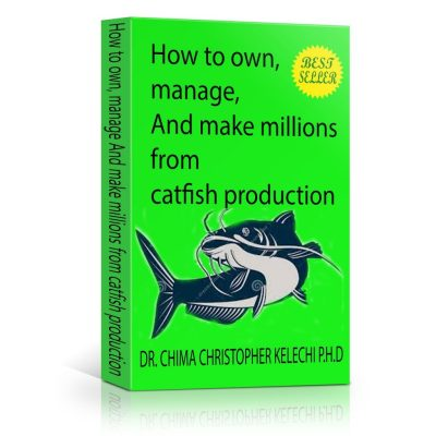 Know How To Own, Manage, And Make Millions From Catfish Production