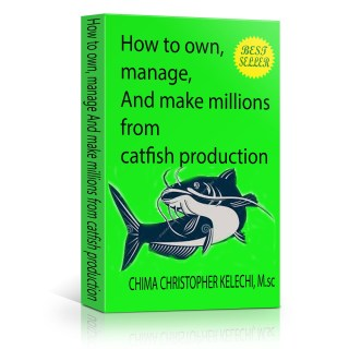 Dry Catfish Production / Marketing With A Business Plan