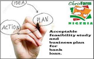 Business/Plan Feasibility Reports/Proposal Writing in Nigeria