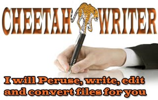Quick & Fast Feasibility Study / Business Plan Writers