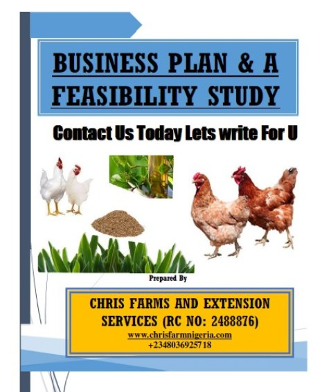 Quick Writers On Poultry Business Plan And Feasibility Study For Investors