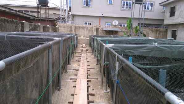 Fish Mobile Tarpaulin Ponds For Fish farming For Sale