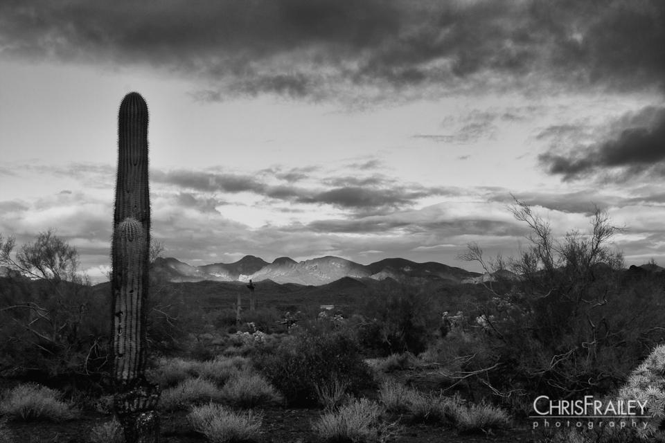 black and white  Arizona Photographer  Chris Frailey