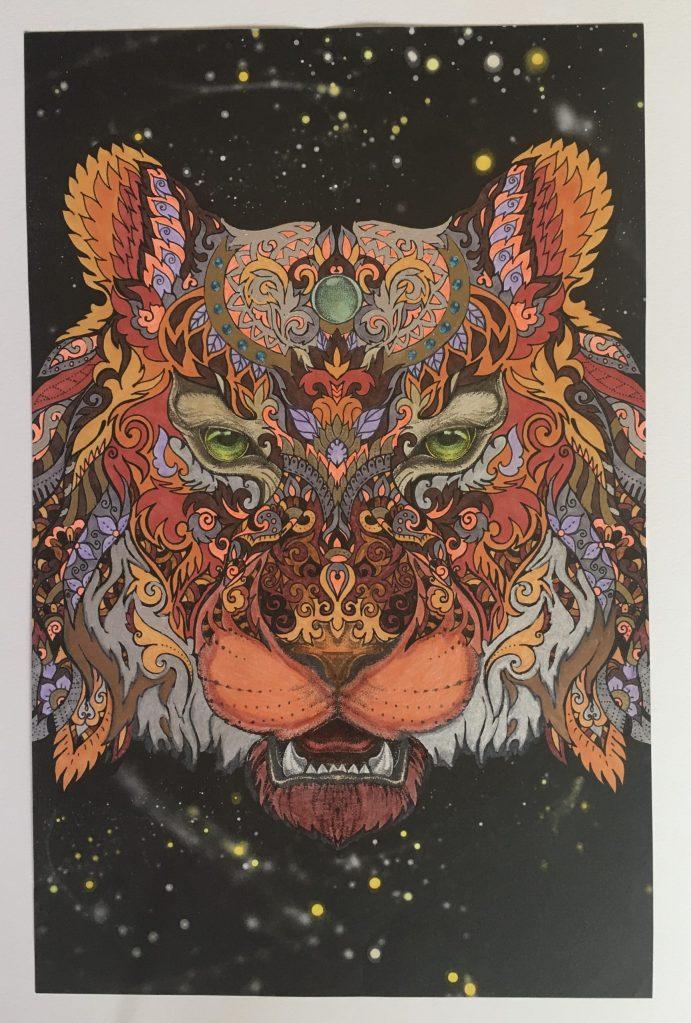 chris-freyer-coloring-31-tiger