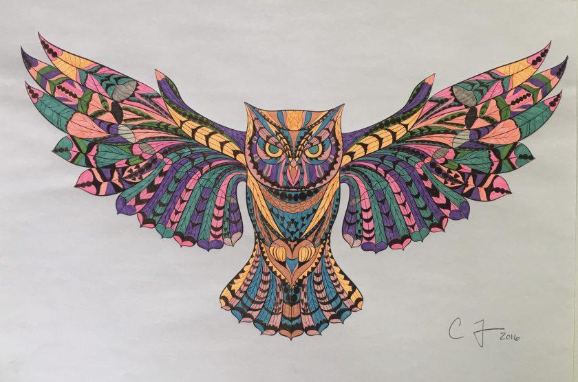 chris-freyer-coloring-8-owl