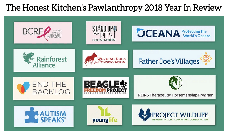 THK Pawlanthropy Year in Review graphic by Chris Freyer