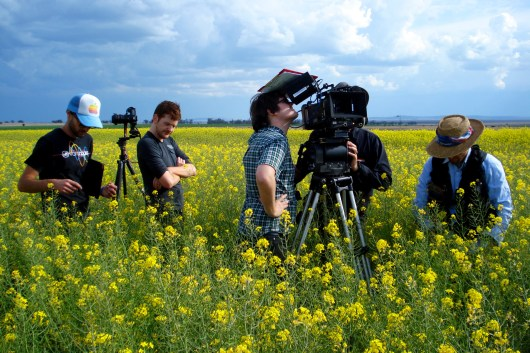 """Crew in the canola field. """"The Landing"""", 2013"""
