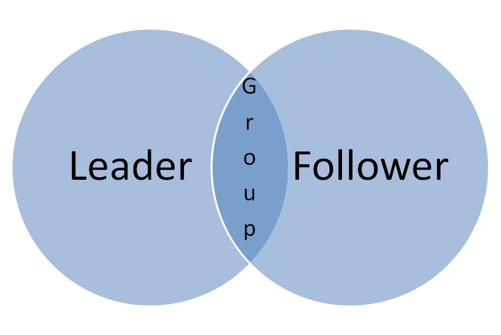 Simple vision Venn diagram showing overlap between leader, follower, and group vision