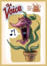 voicecard