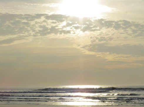 Sunny Surf