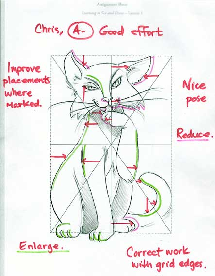 My cat assignment with overlay and note from instructor