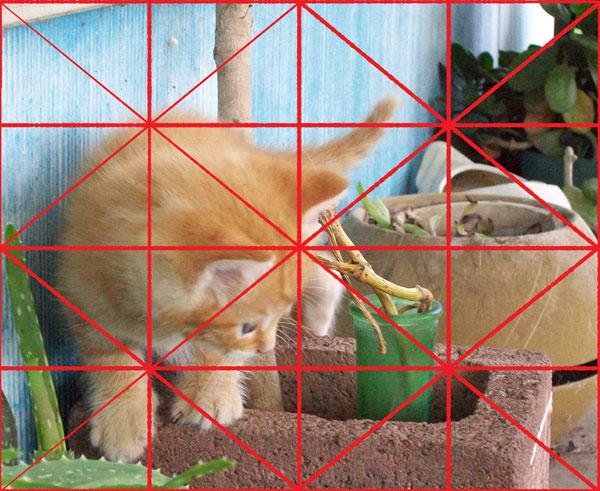 origional-kitty007