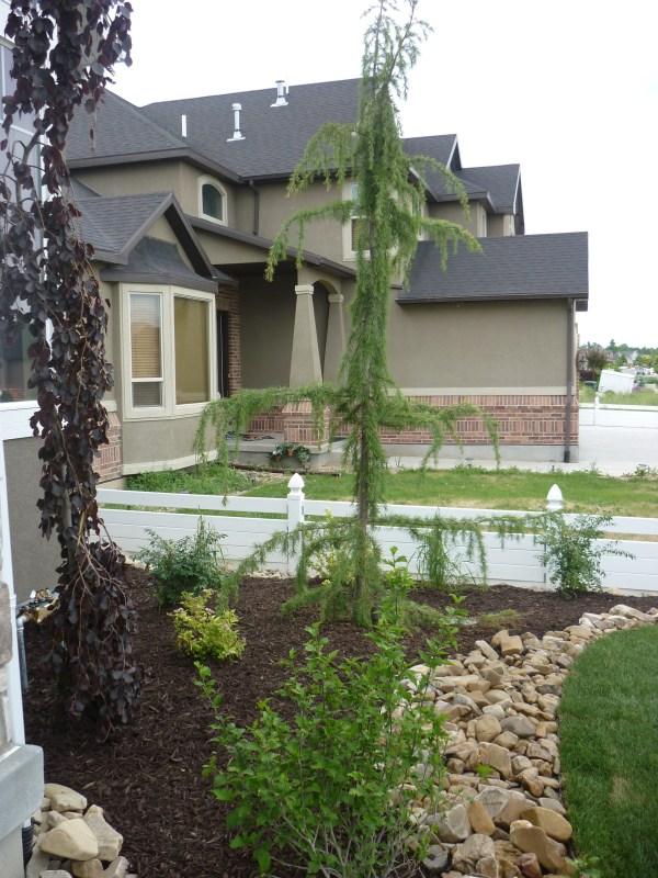 pools chris jensen landscaping