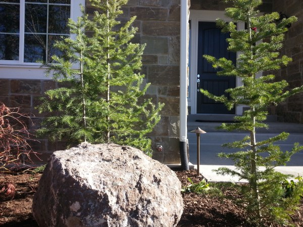 landscaping in cottonwood heights