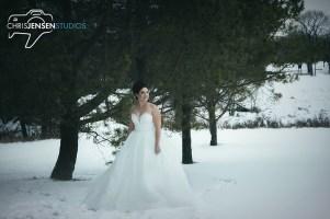 Anna_Lang_Bridal_Models_Chris_Jensen_Studios_Winnipeg_Wedding_Photography (13)