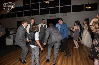 party-wedding-photos-230