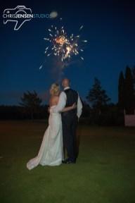 party-wedding-photos-247