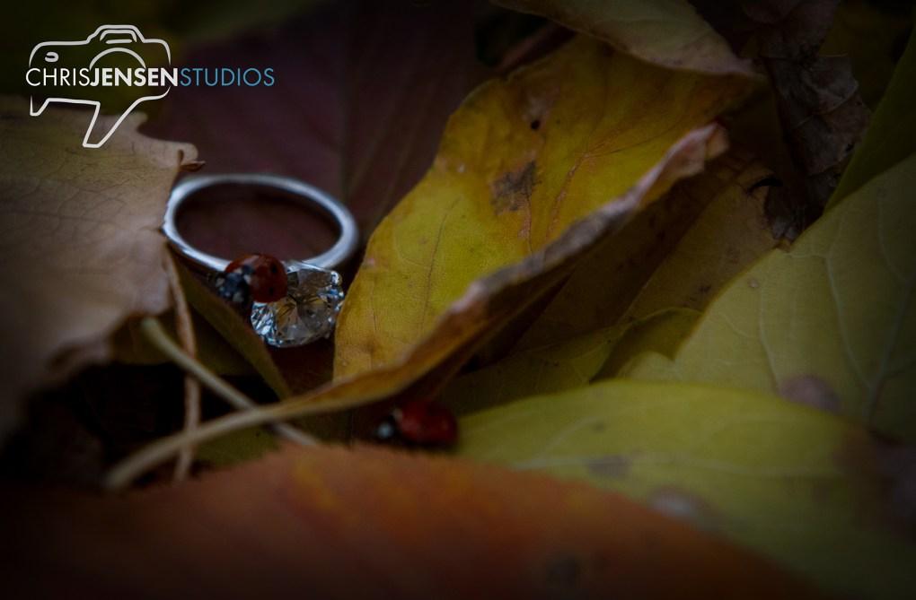 Chris Jensen Studios-Best-Winnipeg_Wedding-Photography-Ruins (30)