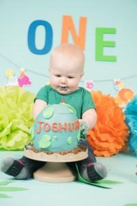 Joshua Cake Smash 2018 (105)