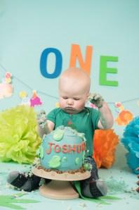 Joshua Cake Smash 2018 (229)