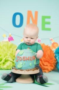 Joshua Cake Smash 2018 (98)