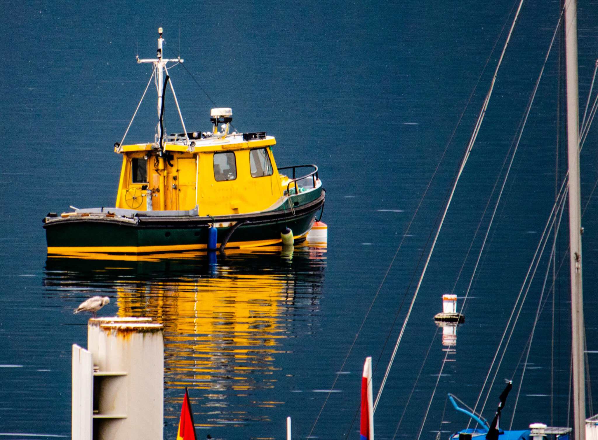 Boat on Brentwood Bay