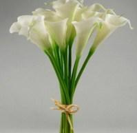 WTC calla lily copy