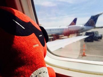 Ninja, flight, travel