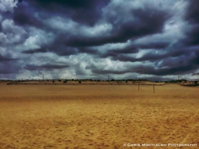Fenwick Dunes