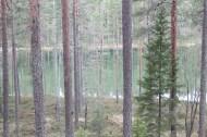 Jämsänkoski trip (25)