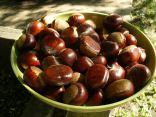 Chestnuts from under the tree