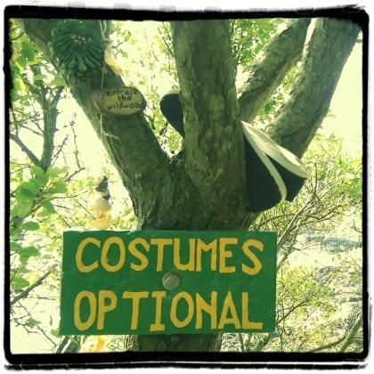 Costumes Optional