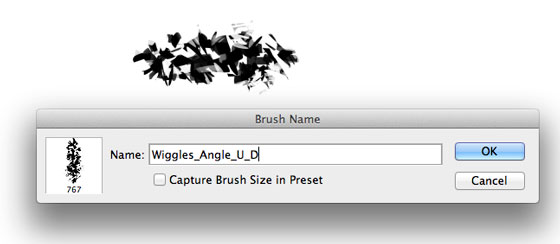 "Name the brush ""Name_Angle_U_D"" and un-check the box so you DO NOT save the Brush Size in the preset."