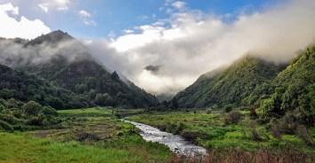 waioeka-gorge