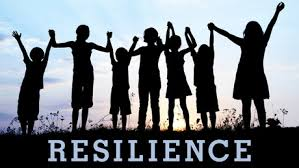 Resilience cooperation