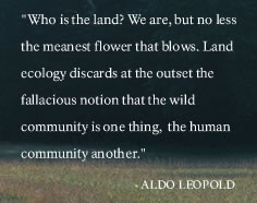 leopold-who-is-the-land