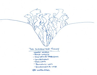 Perley sketch - Dissected Gully