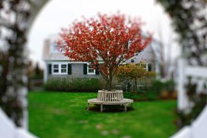 chris powers landscaping nantucket