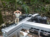 Carlos Weathers, our guardabosque, keeps an eye out for jaguars and poachers (Panama)