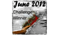 Winner of the June Writing Challenge on The Kelley Armstrong Forum