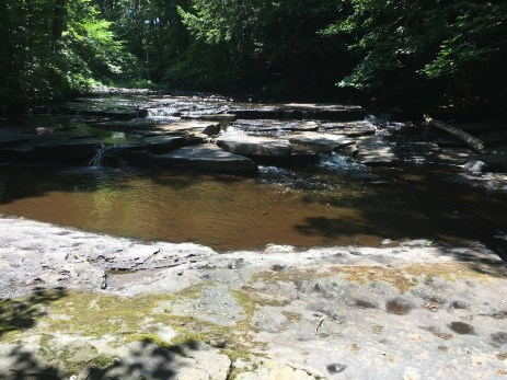 Little Falls at camp (Dempster)