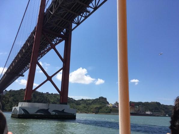 Dolphins on a bridge