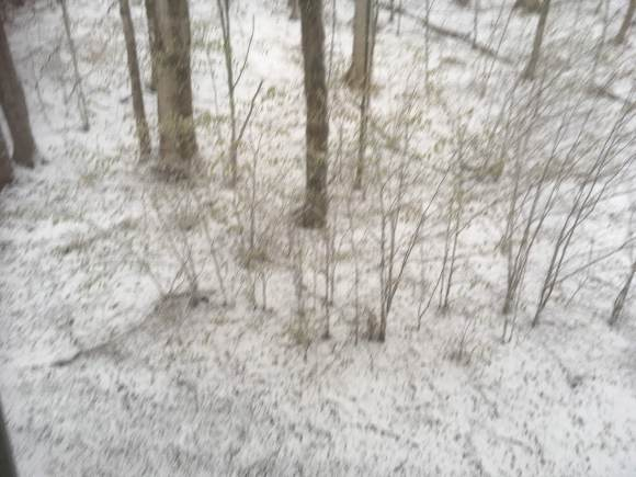 Snow on May 9, 2020