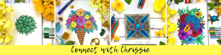 Monthly Connect with Chrissie Email banner